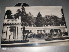 明信片:前苏联出版——相纸摄影明信片一张·1954年
