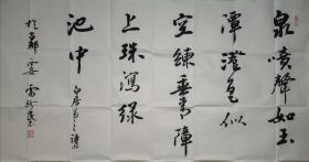 陕西著名书法家雷珍民书法。