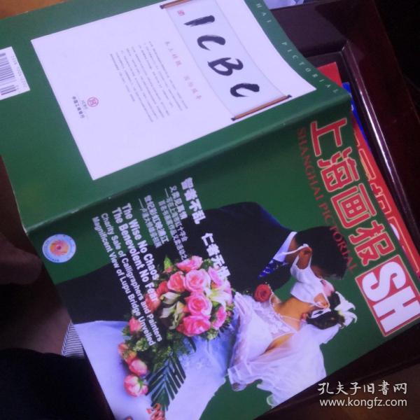 上海画报2003.6