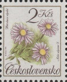 捷克斯洛伐克邮票,1991年植物花卉中草药 高山紫菀,雕刻版 一枚