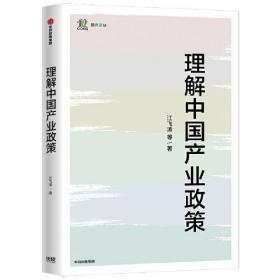 理解中国产业政策/产业发展与环境治理研究论丛