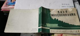 黑龙江省林区住宅设计改革方案图集  16横开本