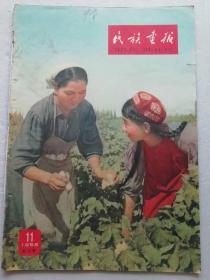 民族画报   1958.11