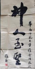 罗易 书法对联 宽35长136(广东著名教育专家 华南师范大学 研究生导师)