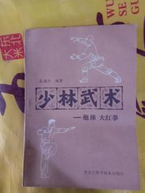 少林武术——炮捶  大红拳G