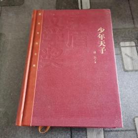 茅盾文学奖获奖作品全集:少年天子(精装本)