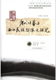 唐代吐蕃与西北民族关系史研究