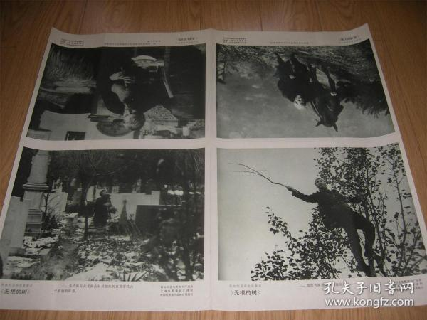 电影译制片《无根的树》剧情海报一套八张全