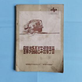 登攀牌 SX250汽车维修手册