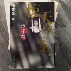 惊天铁案(上)(大32开A)