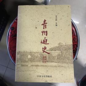 青州通史(全四册)实物拍摄品相如图
