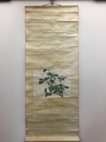 田世光 《茉莉花》立轴(木版水印·画心27×20.5厘米)