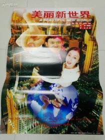 美丽新世界 电影海报