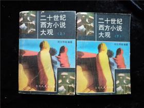二十世纪西方小说大观(上下册)