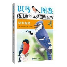 全新正版图书 林中雀鸟英国琥珀出版公司甘肃科学技术出版社9787542425430易呈图书专营店
