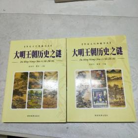 大明王朝历史之谜(上下册)