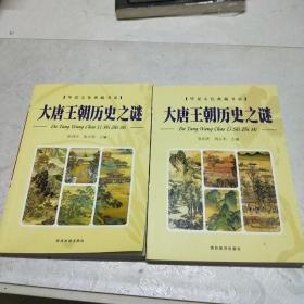 大唐王朝历史之谜(上下)