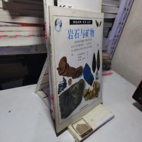 博览视界丛书:岩石与矿物