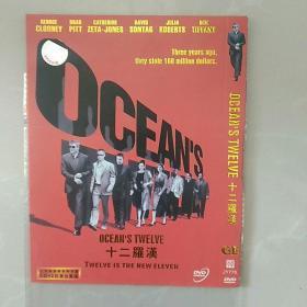 DVD光盘,十二罗汉