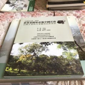 【民族茶文化】特刊 世界茶树原产地中国云南百座古茶山古茶树及民族茶俗