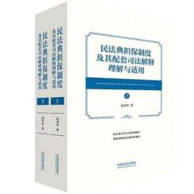 2021 民法典担保制度及其配套司法解释理解与适用 高圣平 中国法制出版社 9787521615678