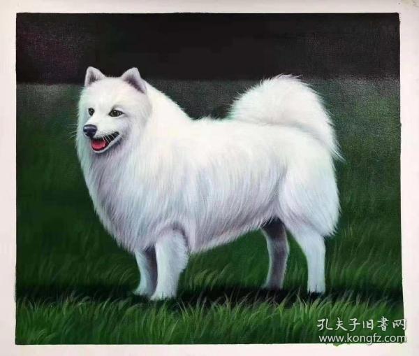 张嘉应精品50x60油画,原价680元,国庆特价6