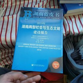 湖南蓝皮书:2019年湖南两型社会与生态文明建设报告  全新 未开封
