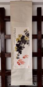 郑若泉,金鱼