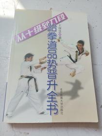 从十级到九段跆拳道品势晋升全书