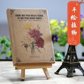 手绘植物 明信片