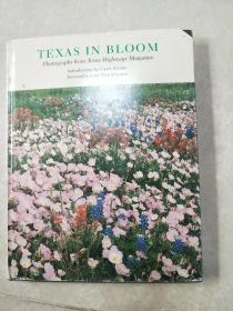 TEXAS IN BLOOM: PHOTORAPHS FROM TEXAS HIGHWAYS MAGAZINE