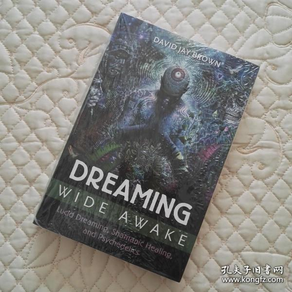 Dreaming Wide Awake: Lucid Dreaming, Shamanic Healing, and Psychedelics 英文原版 没开封