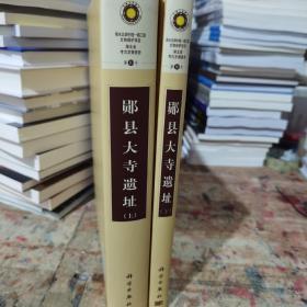 郧县大寺遗址(上下册)