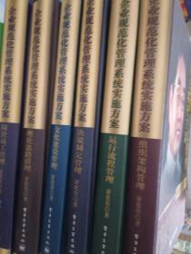 企业规范化管理系统实施方案  六册
