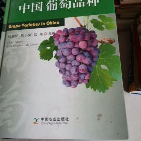 中国葡萄品种