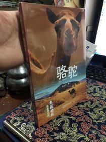 骆驼(影像青少版)/典藏书系  全新未拆封