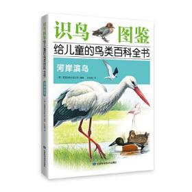 《识鸟图鉴,给儿童的鸟类百科全书:河岸滨鸟》 400多种鸟类介绍,  1200多幅手绘图片,400多幅实景图片,真实还原鸟类世界!