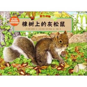{全新正版现货} 橡树上的灰松鼠 9787533278342 (美)格里·哈林顿