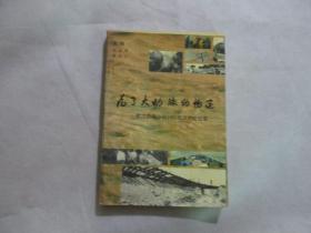 为了大动脉的畅通——武汉铁路分局1991抗洪抢险纪实