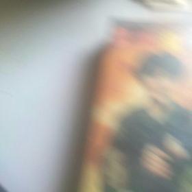 90年代录像天龙虎豹〈正常播放