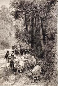 """1886年意大利艺术系列铜版画《那不勒斯卡波迪蒙特森林的小路》—意大利画家""""F.CORTESE""""作品 42x29cm"""