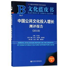 中国公共文化投入增长测评报告(2019)
