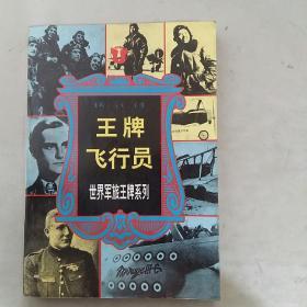 王牌飞行员-世界军旅王牌系列