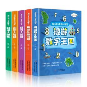 魔法智力开发训练营(全5册全彩版趣味学习大脑开发)