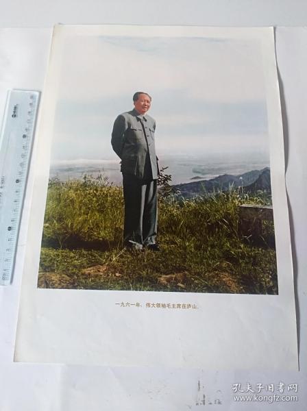 1961年伟大领袖毛主席在庐山  (可用配册)50件商品收取一次运费。如图,大小品自定。