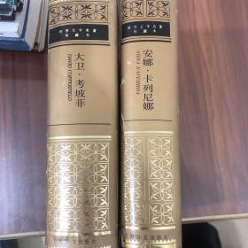 安娜·卡列尼娜/  大卫·考坡菲,精装本 上海译文出版社.两本合售。