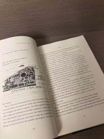 Letters to Vera(纳博科夫《致薇拉的信》,带插图,精装大开本,毛边,厚重)