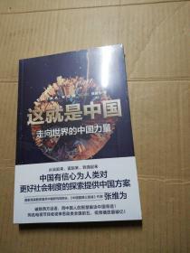 这就是中国:走向世界的中国力量 (末折封)