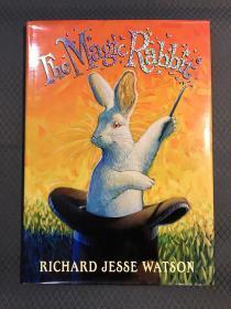 精装大开本The Magic Rabbit