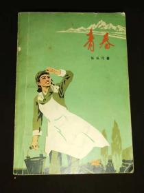 文革小说:  青春
